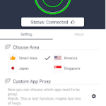 feature of wang vpn for pc
