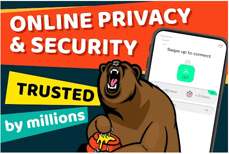 Features of Bear VPN for PC